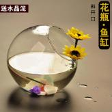 创意斜开口透明玻璃花瓶鱼...