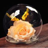 欧式DIY创意透明球形玻...