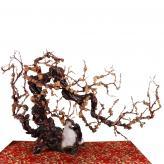 梅花树 根雕艺术品