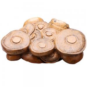 《蘑菇砚 》 红丝砚...